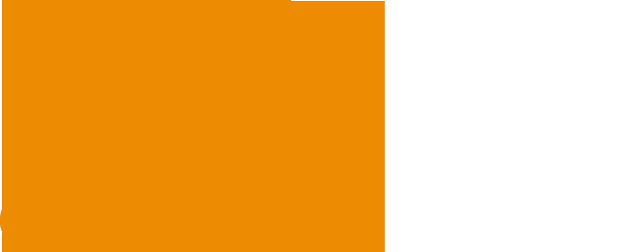 WEC Việt Nam